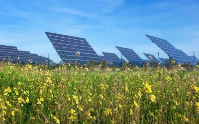 Fontes Renováveis aumentam participação na geração de energia do Brasil